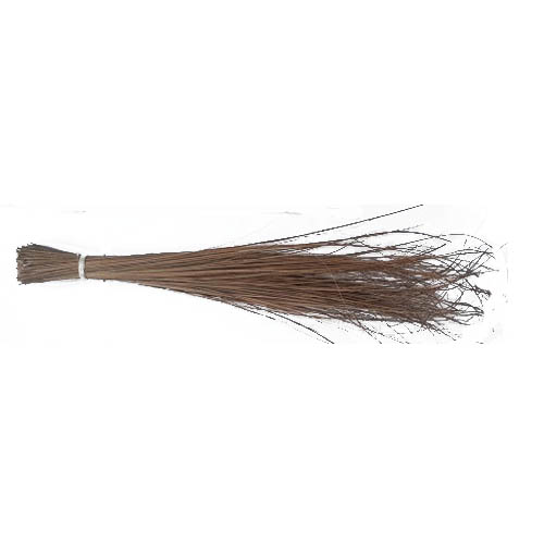 Philippine Broom (walis ting ting )